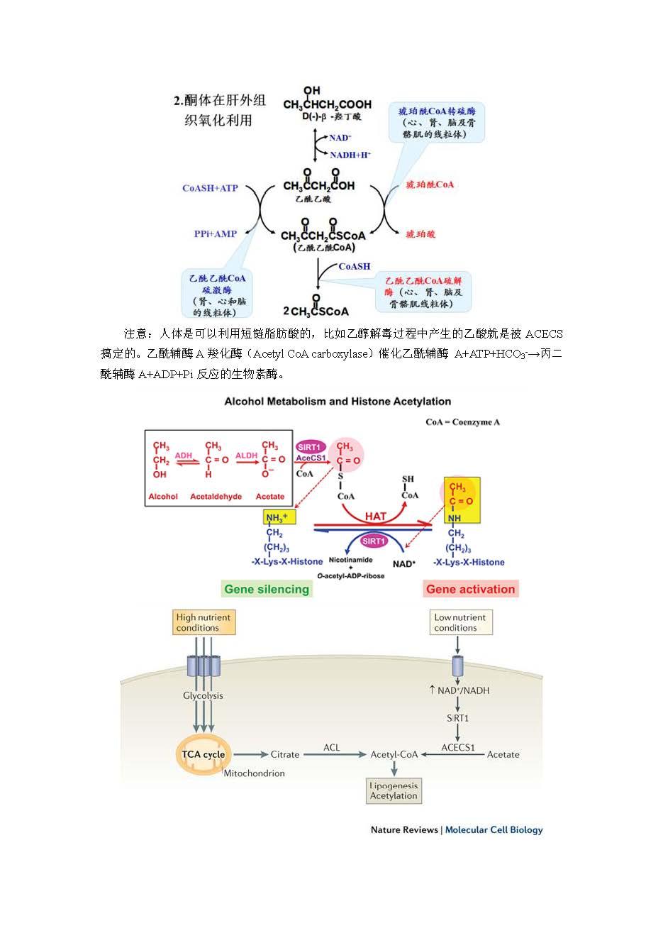 05 2015清华金秋营笔试模拟题答案简析_页面_18