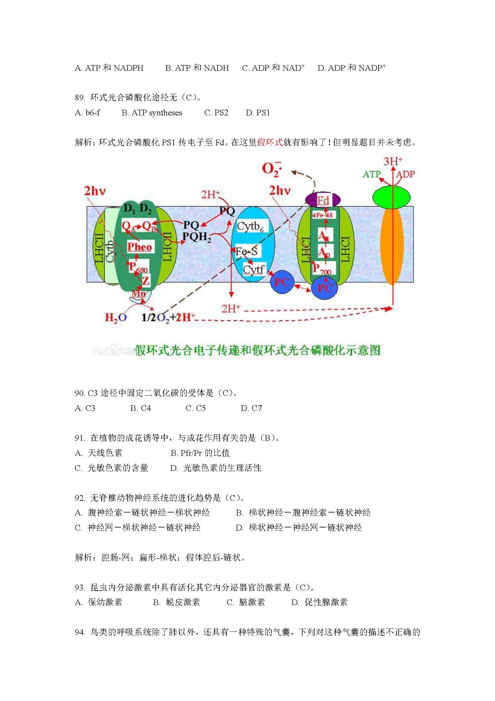 05 2015清华金秋营笔试模拟题答案简析_页面_28