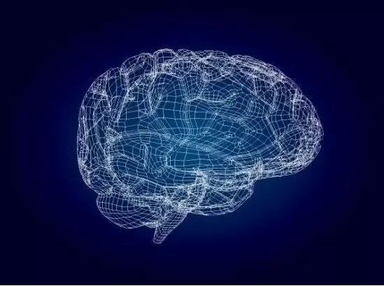 睡眠中的大脑