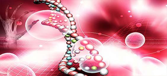 生物细胞生物学