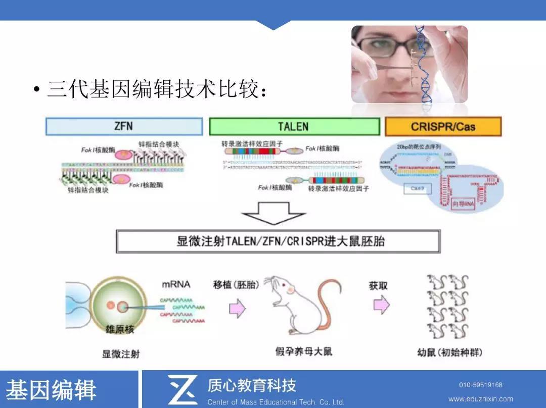 三代基因编辑技术