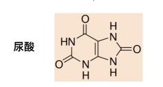 尿酸的结构
